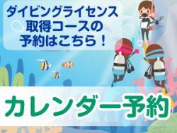 沖ノ島ダイビングサービスマリンスノーのダイビングライセンス取得コースのカレンダー予約はこちら