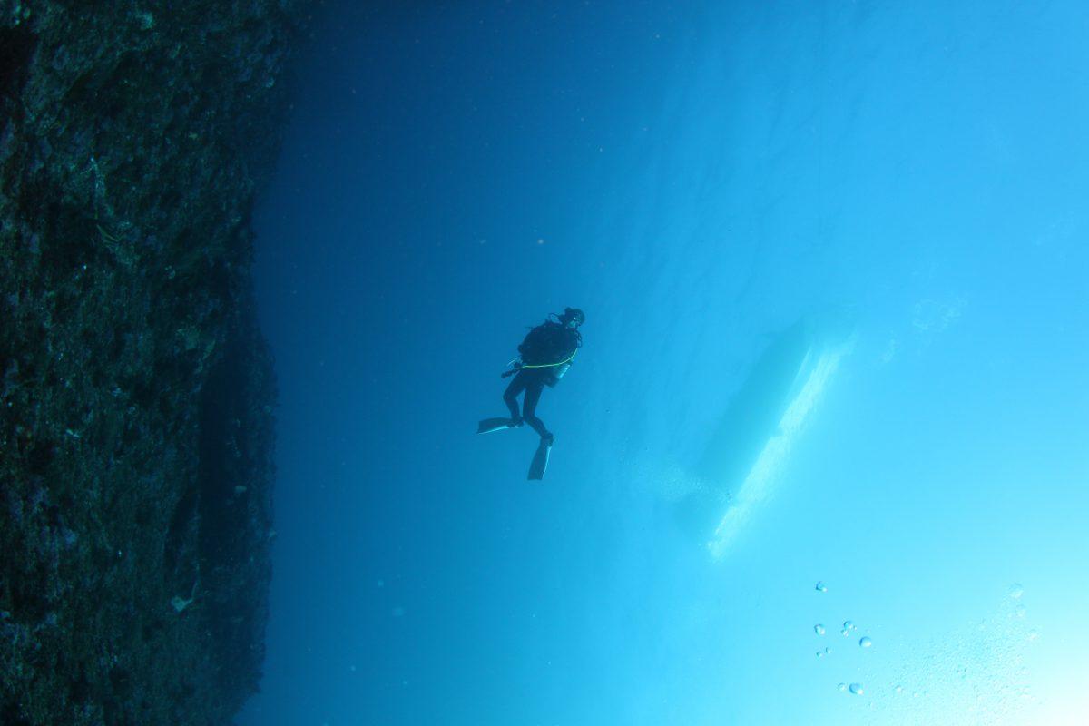 深場から船底くっきり。