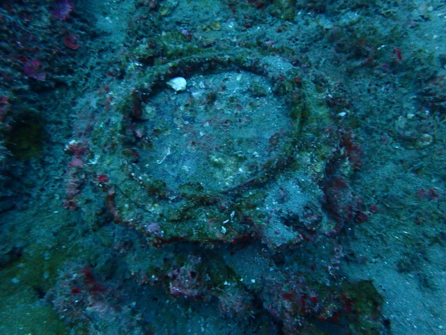 沖ノ島沈船ポイントのブイの修理及びのんびりダイビング