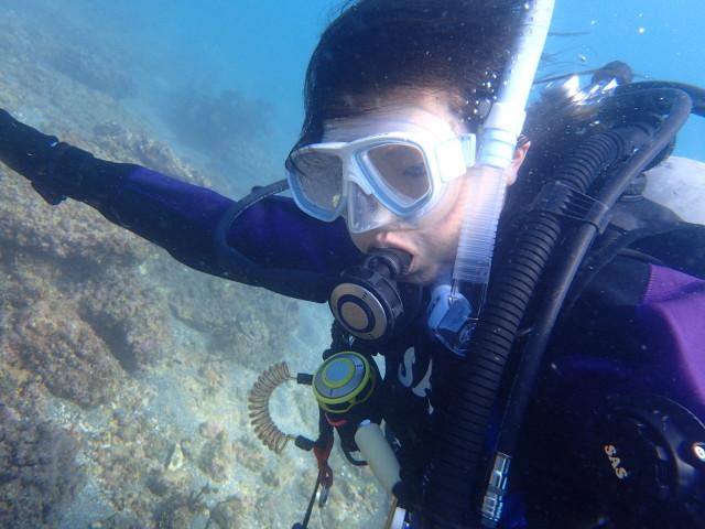 千葉県館山市の沖ノ島ビーチでダイビング【NAUIスペシャルティダイバーコース】|体験ダイビングなら沖ノ島ダイビングサービスマリンスノー