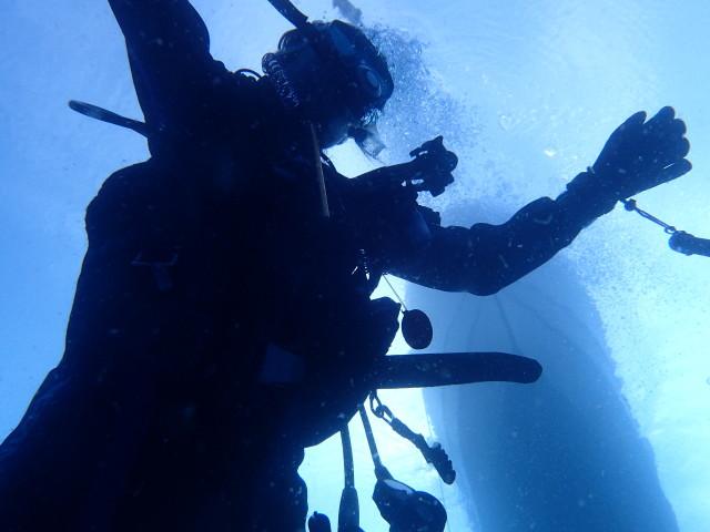 千葉県館山市の沖ノ島沈船と黒根でダイビング