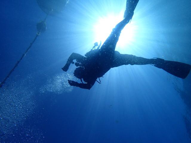 千葉県館山市の沖ノ島沈船と黒根でダイビング|体験ダイビングなら沖ノ島ダイビングサービスマリンスノー