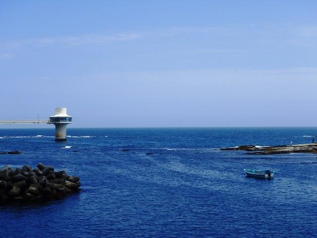 今日もベタ凪、いい海です