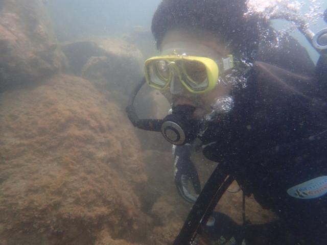 千葉県館山市の沖ノ島ビーチで体験ダイビング  2017/07/17