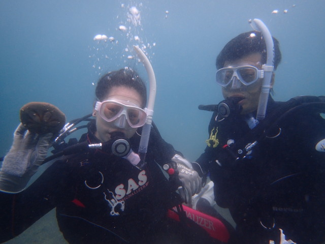 千葉県館山市の沖ノ島ビーチで体験ダイビング 2017/07/26