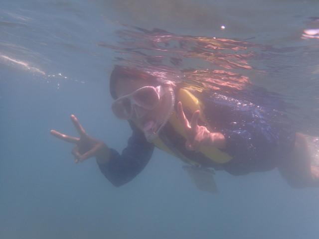 千葉県館山市の沖ノ島ビーチでシュノーケリング体験  2017/07/29