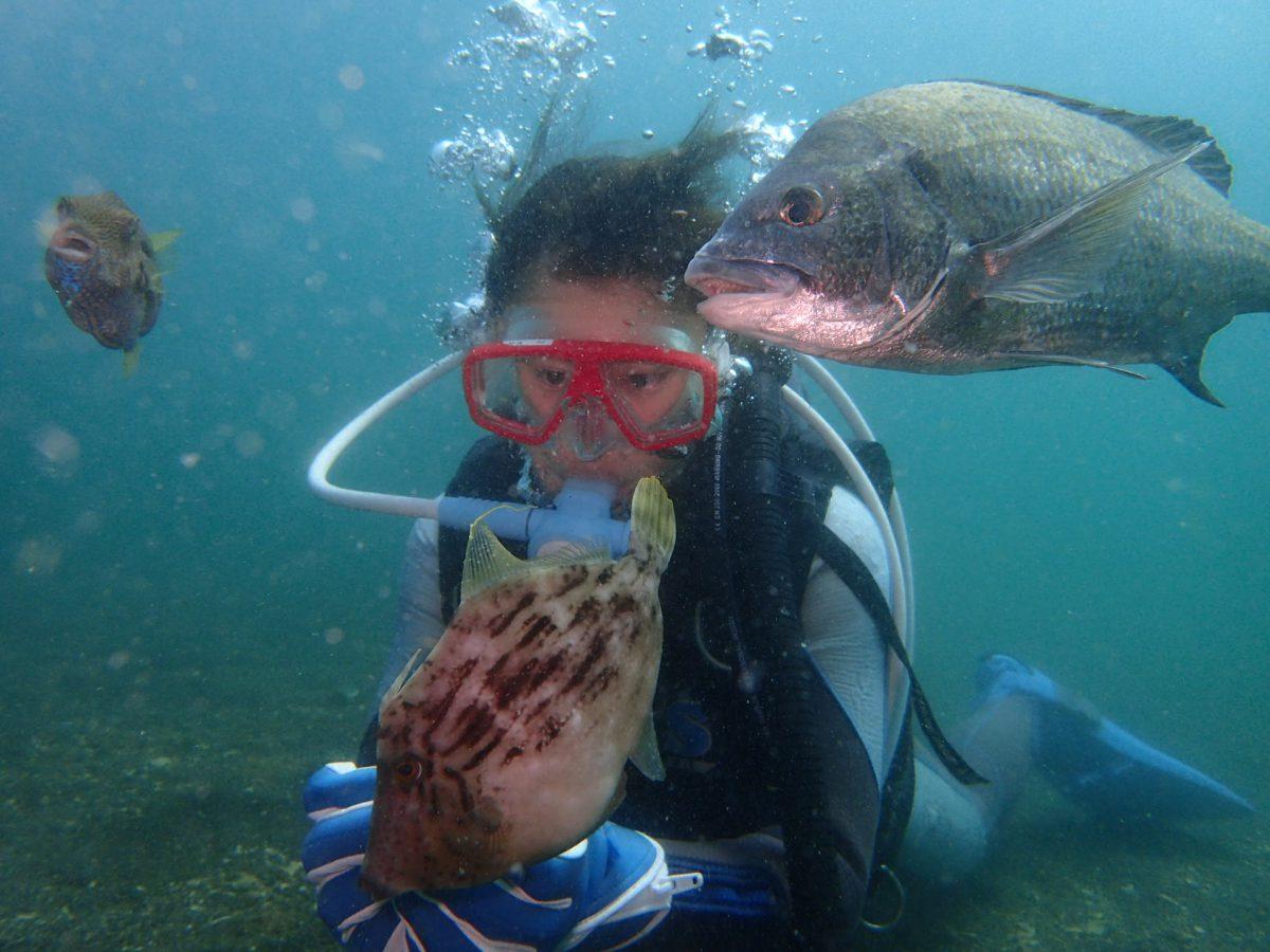 水温も暖かく魚たちも気持ちよく見えるのは気のせいでしょうか?