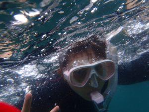 千葉県館山市の沖ノ島ビーチでシュノーケリング体験|体験ダイビングなら沖ノ島ダイビングサービスマリンスノー