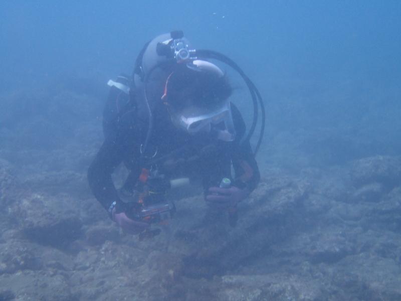 千葉県館山市の沖ノ島ビーチでお客さんが撮った写真|千葉県館山市の沖ノ島ダイビングサービスマリンスノー