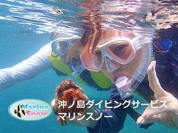 沖ノ島ダイビングサービス マリンスノー